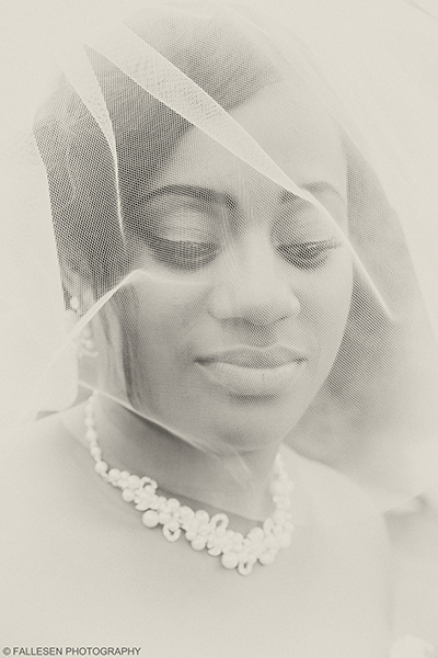 Bridal Portrait for the Kirkwood Wedding in Buffalo,NY